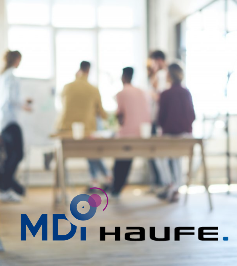 Team MDI & HAUFE